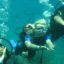 Potápění