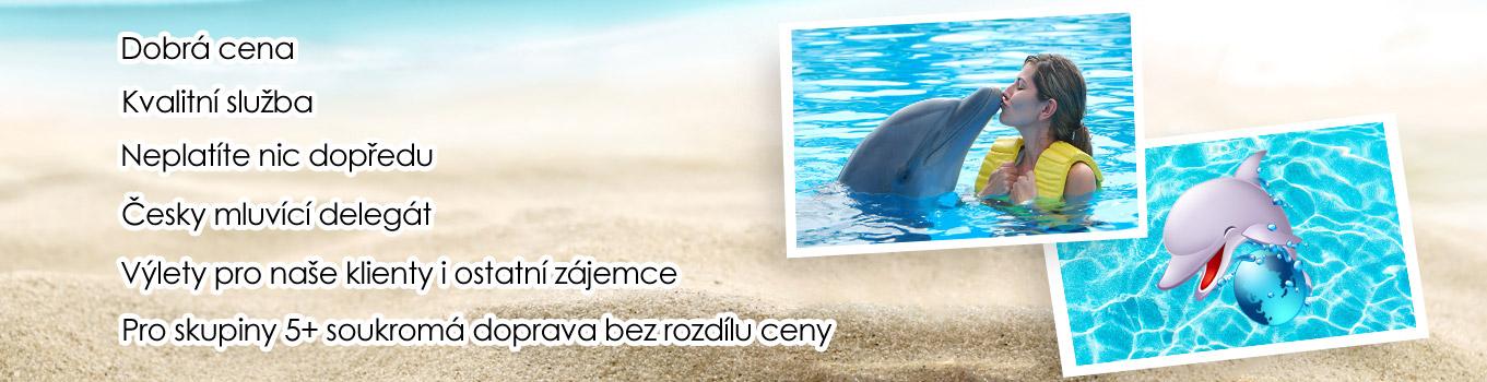 Delfíní show z Alanye, Delfíní show ze Side, Delfíní show z Beleku, Delfíní show z Antalye